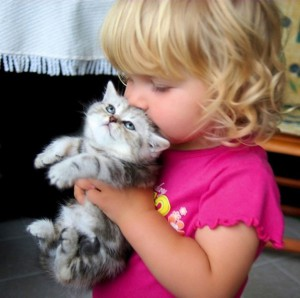 little-girl-kisses-kitten