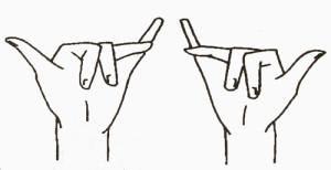 Страна пальчиковых игр 17